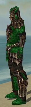 Warrior Elite Dragon Armor M dyed side