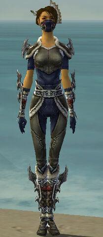 File:Assassin Norn Armor F gray front.jpg