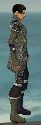 File:Elementalist Canthan Armor M gray side.jpg