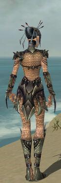Necromancer Elite Cabal Armor F gray back