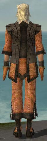 File:Elementalist Sunspear Armor M dyed back.jpg