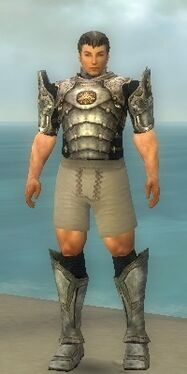 Warrior Sunspear Armor M gray chest feet front