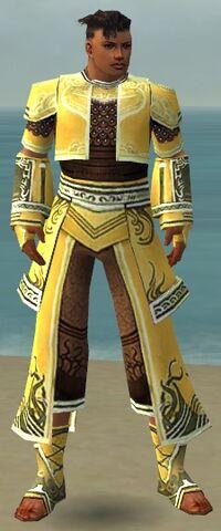 File:Monk Deldrimor Armor M dyed front.jpg