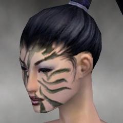 File:Necromancer Luxon Armor F gray head left.jpg