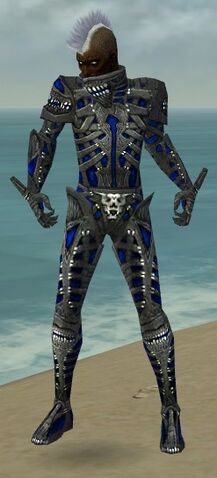 File:Necromancer Necrotic Armor M dyed front.jpg