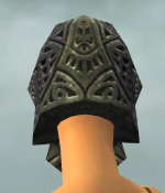 File:Warrior Elite Platemail Armor F gray head back.jpg