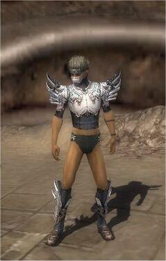 Assassin Asuran Armor M gray chest feet front