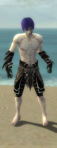 File:Necromancer Elite Luxon Armor M gray arms legs front.jpg