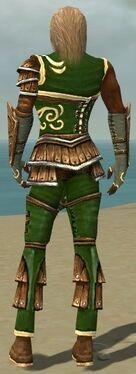 Ranger Shing Jea Armor M dyed back