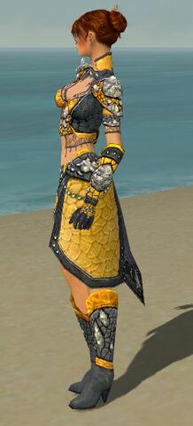 File:Elementalist Elite Stoneforged Armor F dyed side.jpg