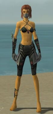 Assassin Luxon Armor F gray arms legs front