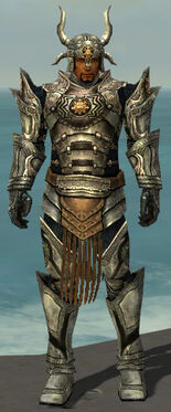 Warrior Elite Sunspear Armor M gray front