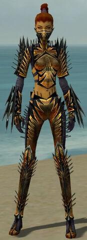 File:Assassin Elite Exotic Armor F dyed front.jpg