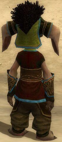 File:Vekk Armor Brotherhood Back.jpg