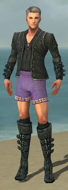 Mesmer Elite Rogue Armor M gray chest feet front