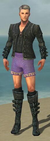 File:Mesmer Elite Rogue Armor M gray chest feet front.jpg
