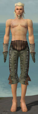 Elementalist Istani Armor M gray arms legs front