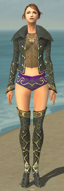 Mesmer Krytan Armor F gray chest feet front