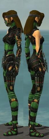 File:Assassin Elite Kurzick Armor F dyed side.jpg