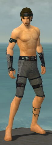 File:Assassin Shing Jea Armor M gray arms legs front.jpg