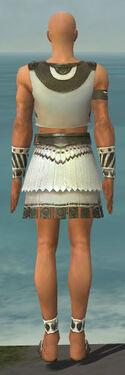 Paragon Istani Armor M gray back