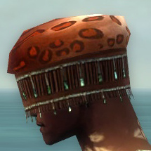 File:Ritualist Elite Exotic Armor M dyed head side.jpg