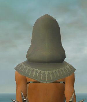 File:Dervish Sunspear Armor F gray head back.jpg