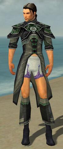 File:Elementalist Elite Luxon Armor M gray chest feet front.jpg