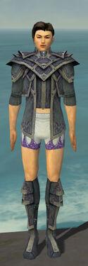 Elementalist Krytan Armor M gray chest feet front