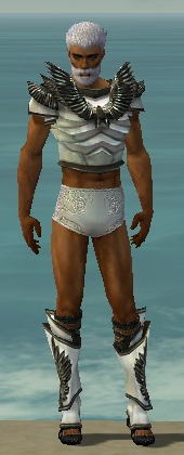 File:Paragon Obsidian Armor M gray chest feet front.jpg