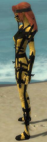 File:Assassin Obsidian Armor F dyed side.jpg