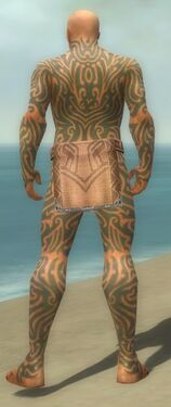 Monk Flowing Armor M gray back