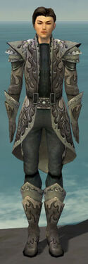 Elementalist Flameforged Armor M gray front