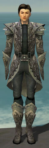 File:Elementalist Flameforged Armor M gray front.jpg