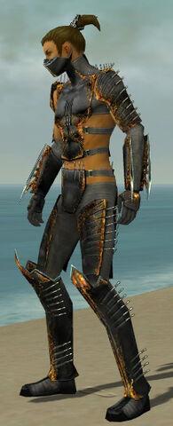 File:Assassin Exotic Armor M gray side.jpg