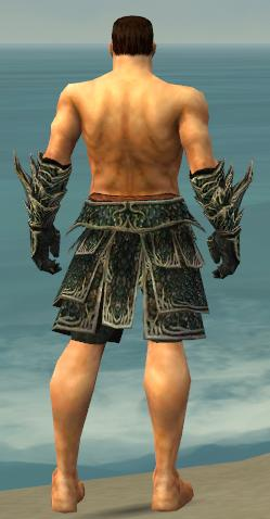 File:Warrior Elite Luxon Armor M gray arms legs back.jpg