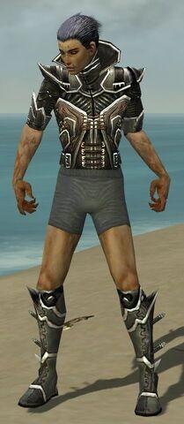File:Necromancer Elite Kurzick Armor M gray chest feet front.jpg