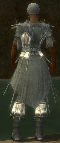 File:Elementalist Primeval Armor M gray chest feet back.jpg