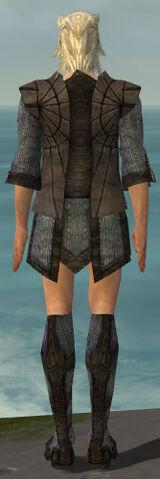 File:Elementalist Sunspear Armor M gray chest feet back.jpg