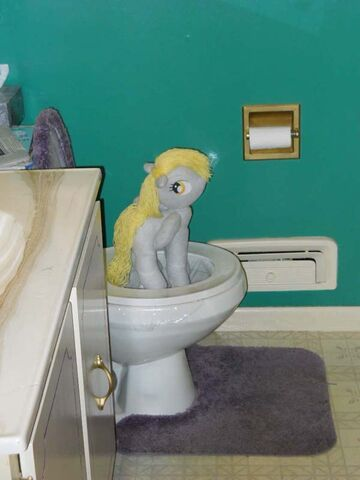File:64857 - Artist-Eratosofcyrene bathroom but why derpy hooves lock the damn door derpy! plushie Privacy real life toilet.jpg