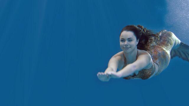 File:Nixie swimming.jpg
