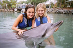 Phoebe And Dolphin