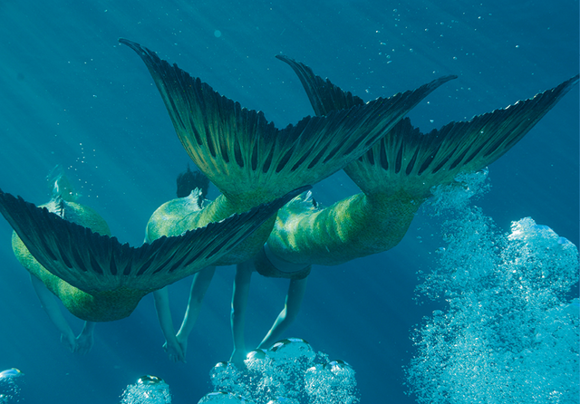 File:Mermaid Tails.png