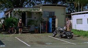 Rikki's House