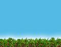 Miniatura da versão das 00h35min de 14 de dezembro de 2013
