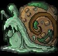 Quest snail