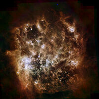 Large Magellanic Cloud Infrared 1