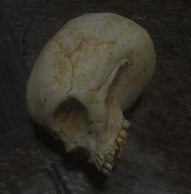 File:Skull thumbnail.png