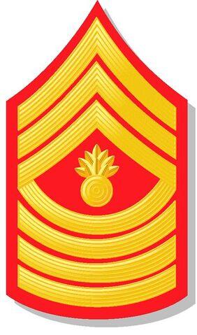 File:Marine Corp MGS.JPG