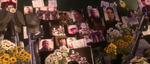Memorial pictures